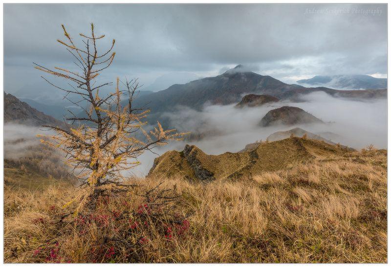 доломиты, италия, осень, пасмурно, утро Хмурое утро в Доломитахphoto preview