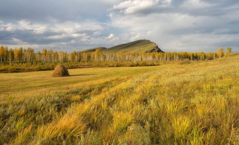 ...Золотые просторы Осени...photo preview