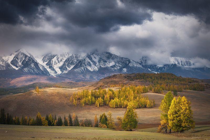 алтай осень Осеннее настроениеphoto preview