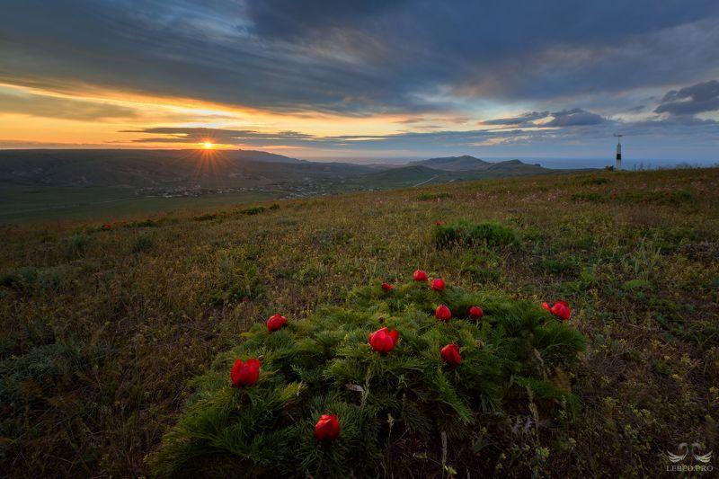 Рассвет весеннийphoto preview