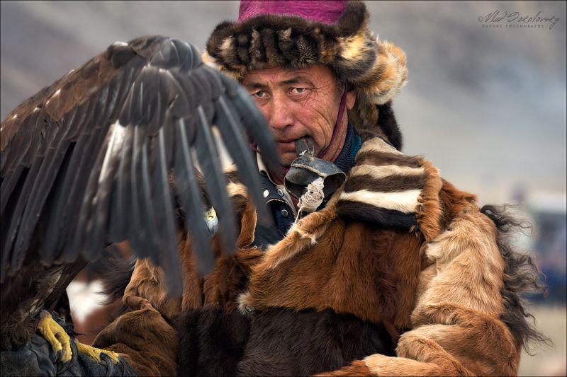 монголия, азия, golden eagle festival, охотники с беркутами, осень, golden eagle, mongolia, asia, Монголия: люди..лица .. ч.IIphoto preview