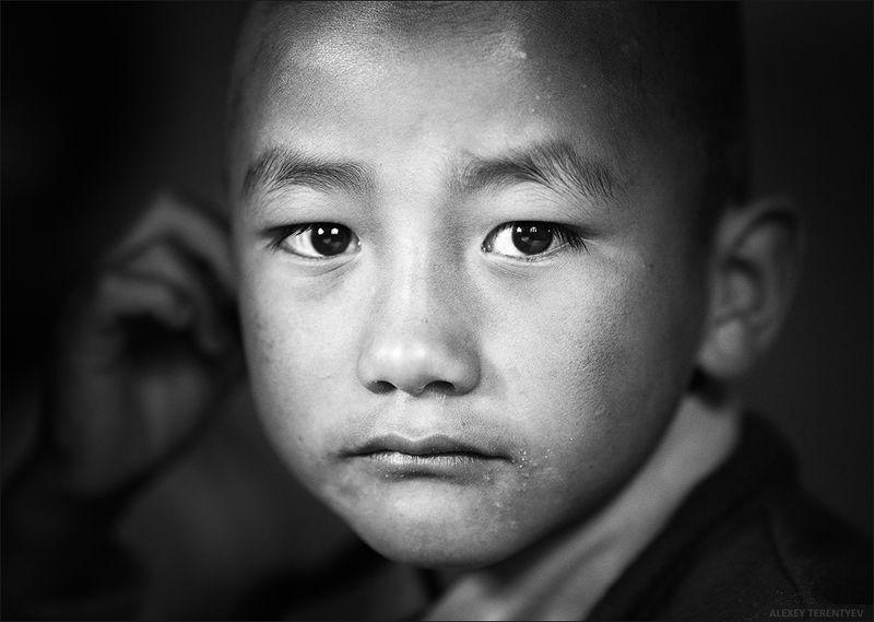 Индия, монах, портрет, фототур Молодой монахphoto preview