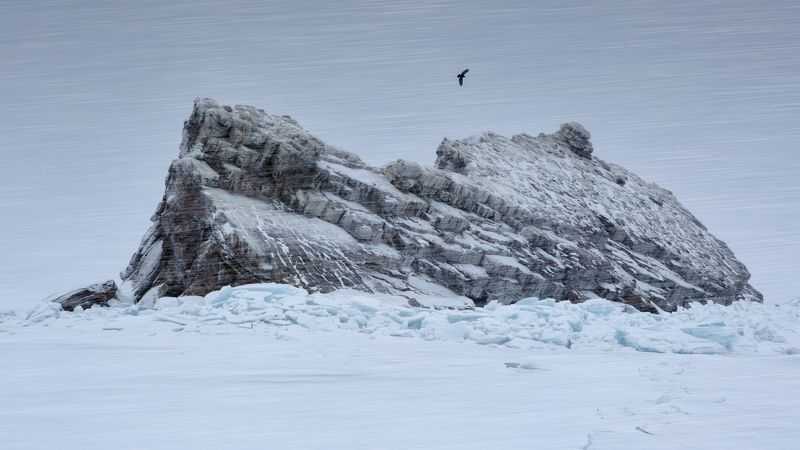 остров, байкал, зима, снег, метель, скалы, ворон, путешествие, стихия, борьба, ненастье, антон селезнев Ворон над островом Еленкаphoto preview