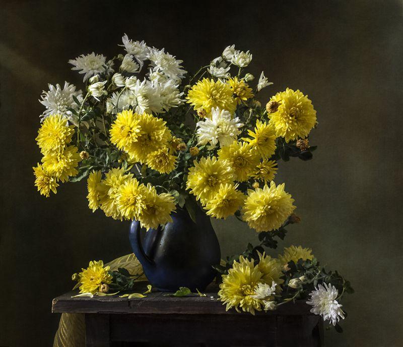 натюрморт, цветы, still life Хризантемыphoto preview