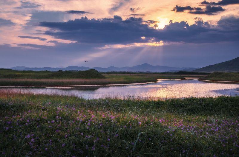 лето, вечер, закат, облака ***photo preview