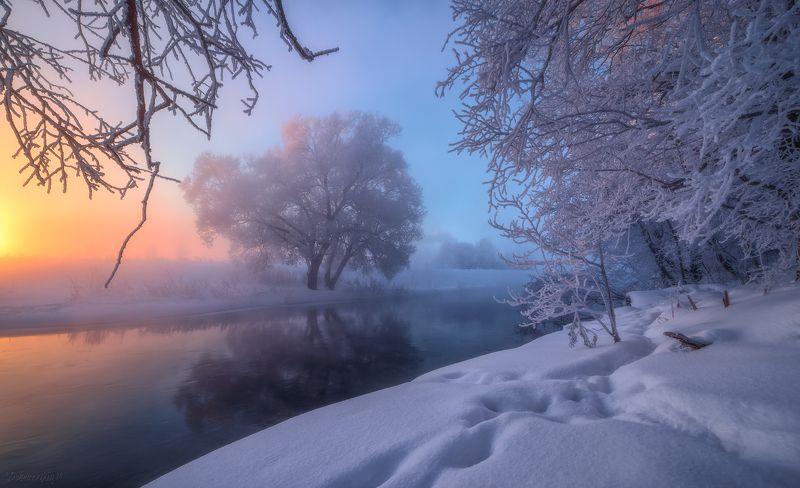 истра, рассвет, туман, мороз, зима, дерево, река Зимняя утренняя 2photo preview