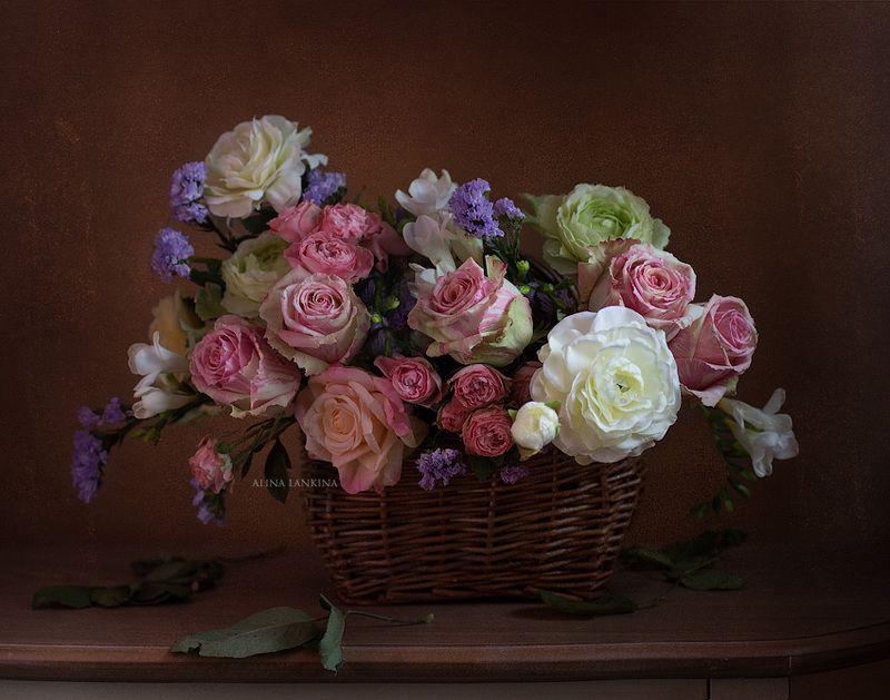 розы, цветы, букет, натюрморт, фотонатюрморт, алина ланкина ***photo preview