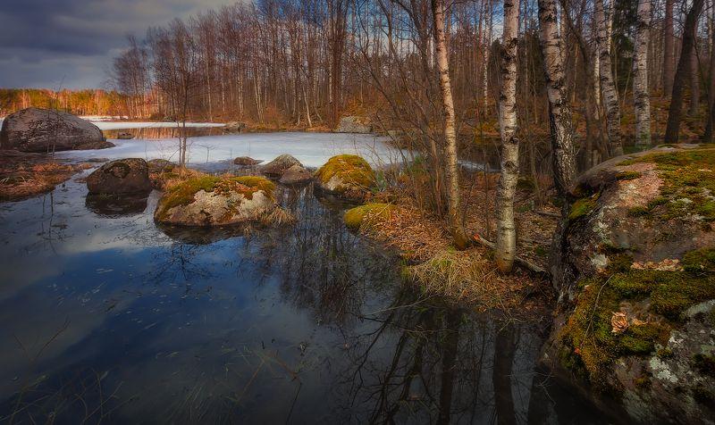 питер, вуокса, весна, пейзаж, васильево Весна на Вуоксе...photo preview