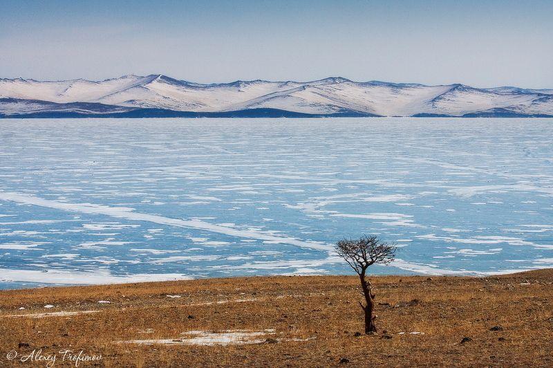 байкал, пейзаж, ольхоне Байкальский мартphoto preview