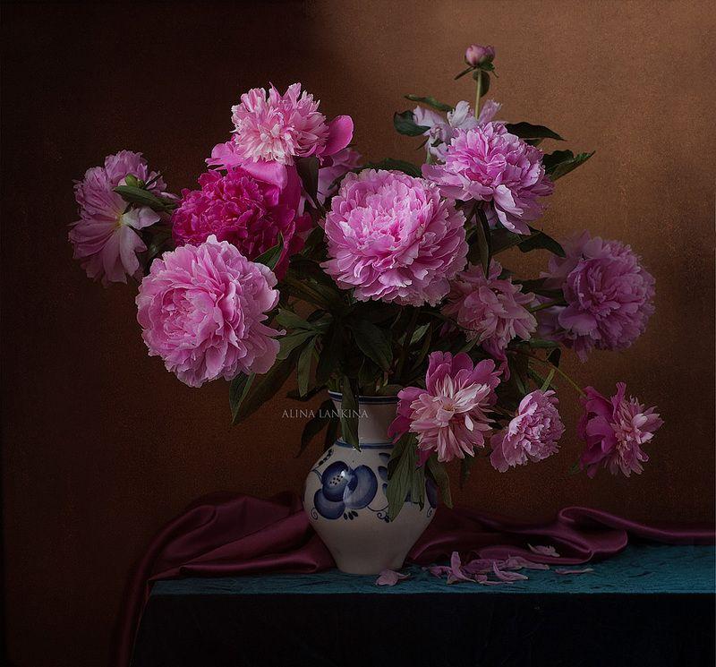 still life, натюрморт, фотонатюрморт, пионы, букет, цветы, лето, июнь, алина ланкина ***photo preview