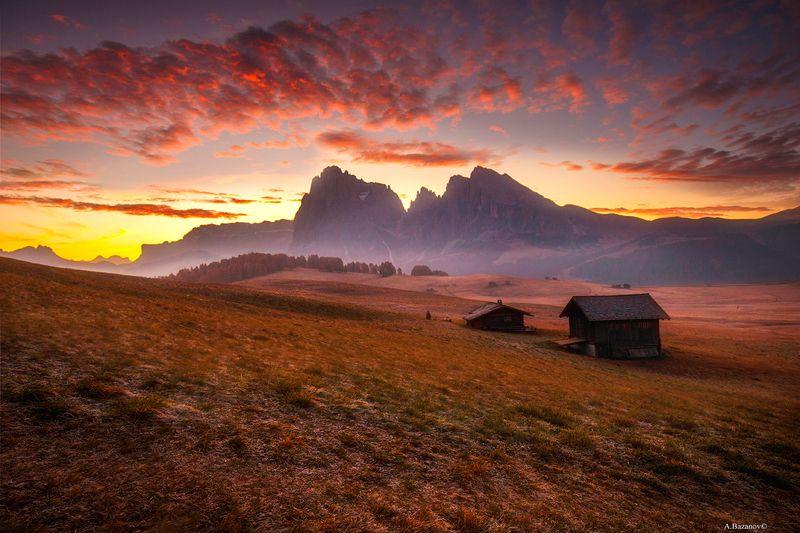 Alp de Susiphoto preview
