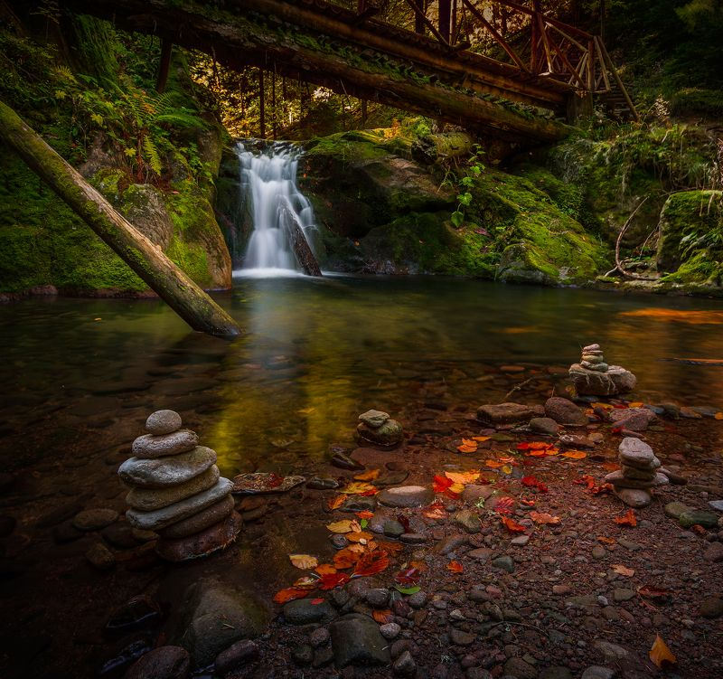 landscape, nature, autumn, scenery, bridge, forest, wood, mountain, rhodopi, bulgaria Contemplation / Under the bridgephoto preview