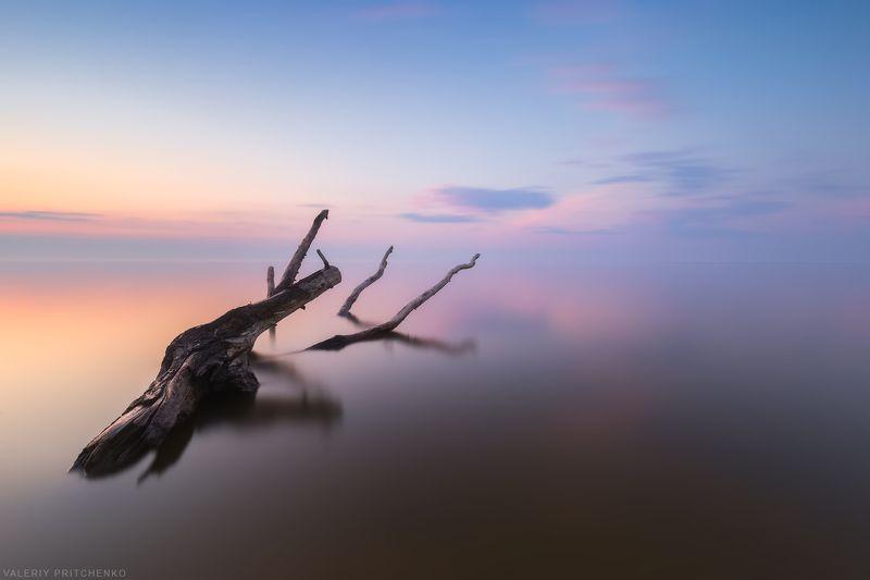 Безмолвный берег.photo preview