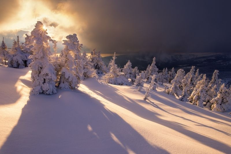 frozen, winter, mountains, czechia,snow, A moment of lightphoto preview