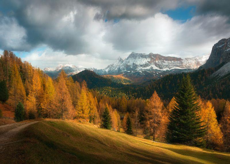 Италия, Доломиты, Альпы, лес, горы, осень Дыхание ноябряphoto preview