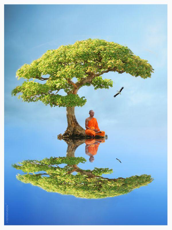 монах, медитация, дерево, вода, аист, небо Нирванаphoto preview