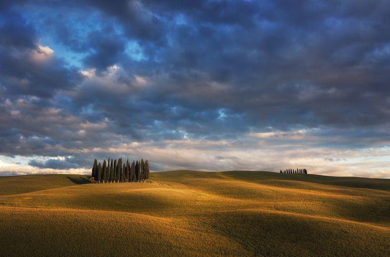 Тосканский велюрphoto preview