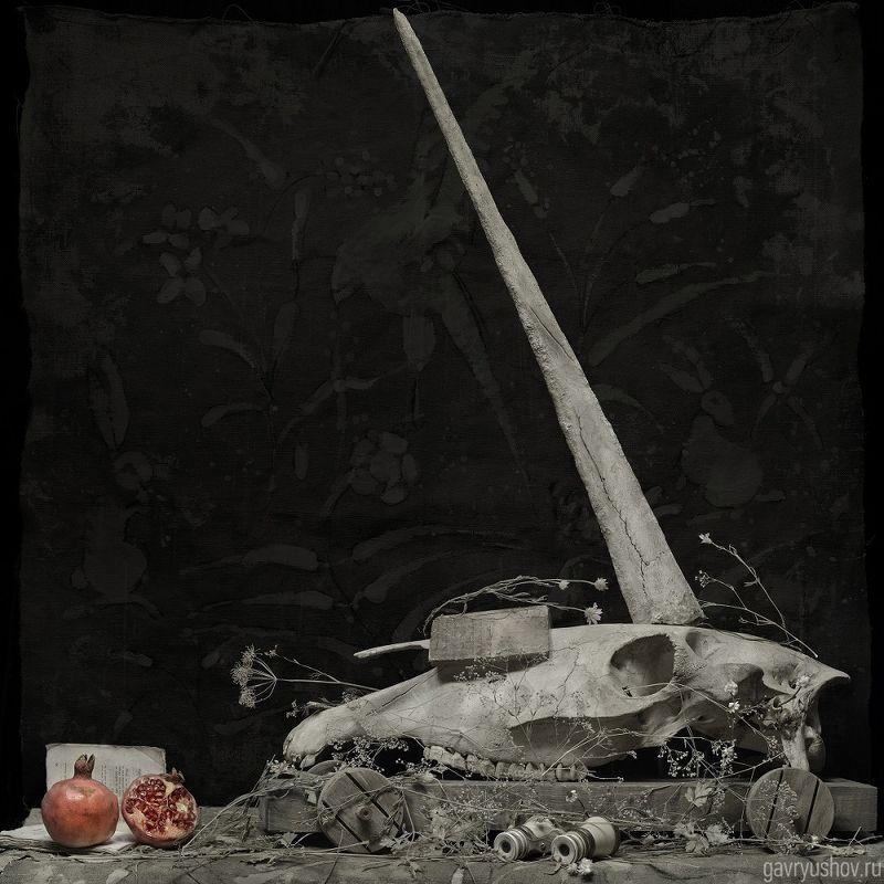 натюрморт, still life, арт, art, conceptual Unicornis+Virgophoto preview