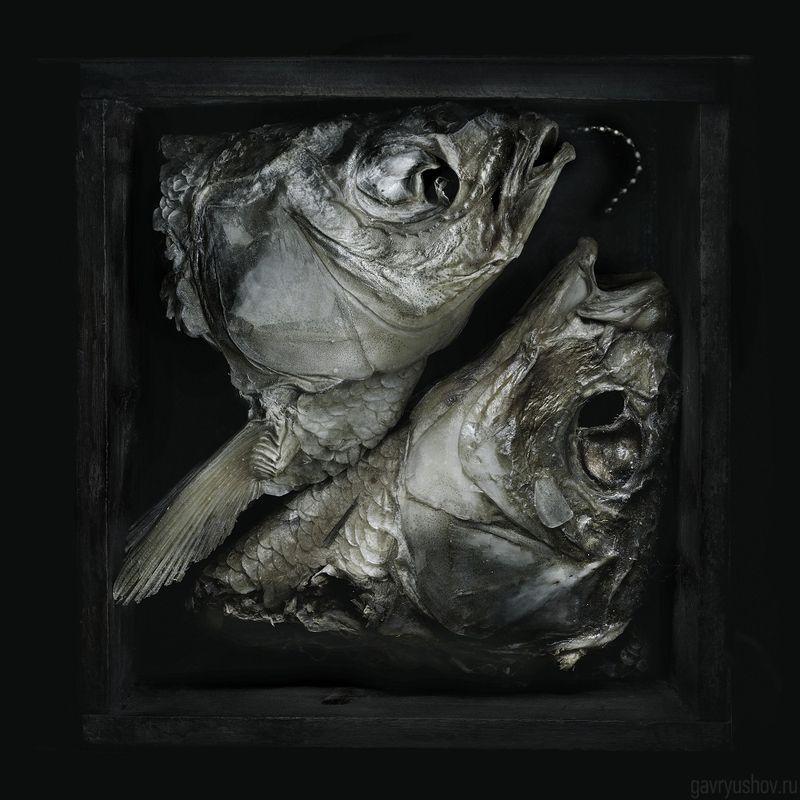 натюрморт, still life, арт, art, conceptual Aquamonamurphoto preview