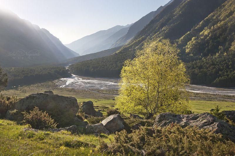 кавказ, горы, кабардино-балкария Утро над Башильюphoto preview