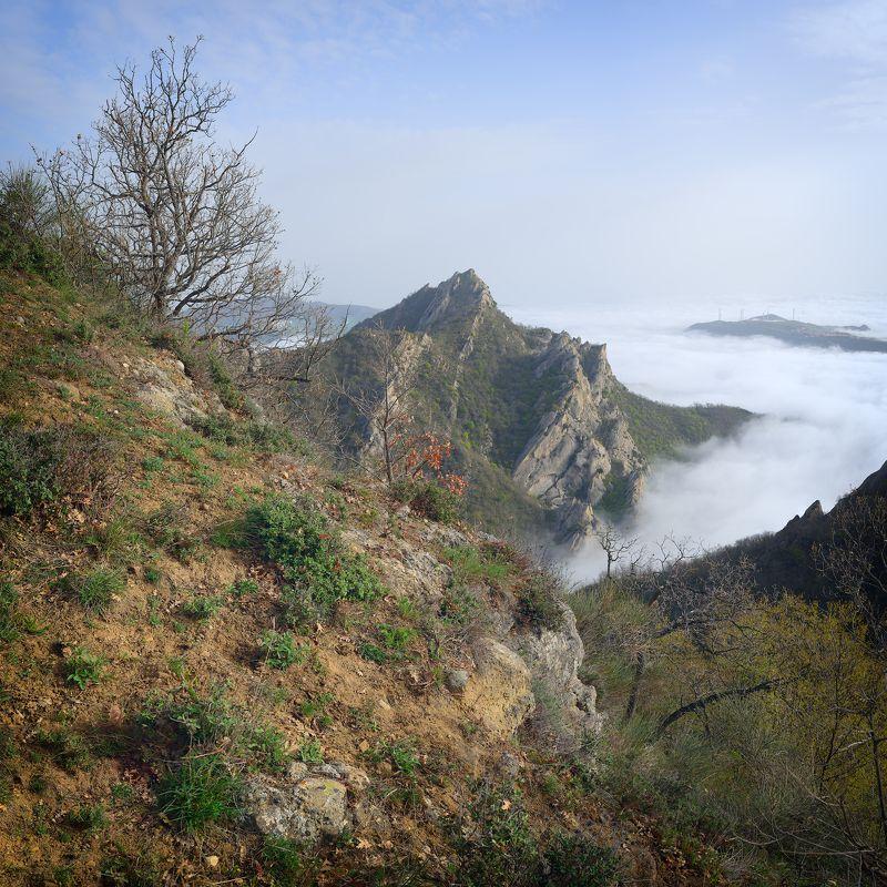 панорама, кастельмедзано, италия, горы, рассвет, пейзаж, туман Рассвет над Кастельмедзаноphoto preview