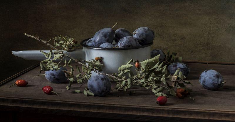 натюрморт, сливы, фрукты, still life Чернослив и шиповникphoto preview