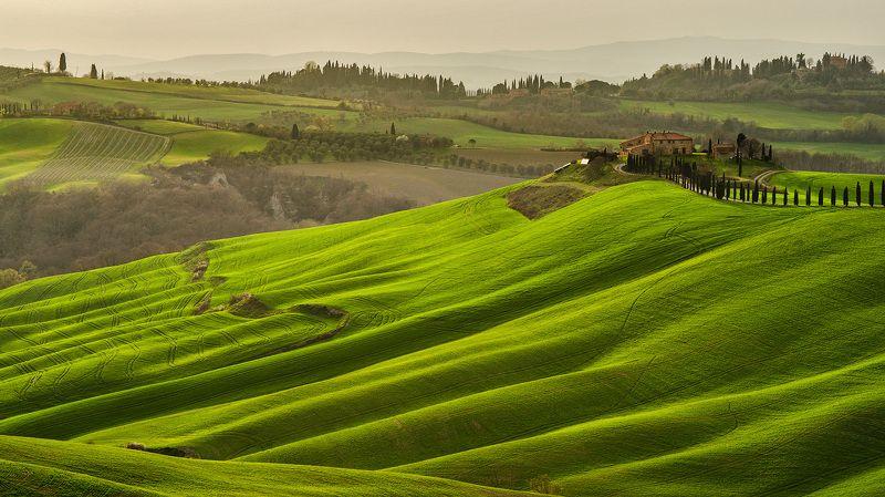 тоскана, италия, italy, tuscany, valdorcia, зеленые поля тосканы, asciano, путешествие тоскана, весна Весенние поля Тосканыphoto preview