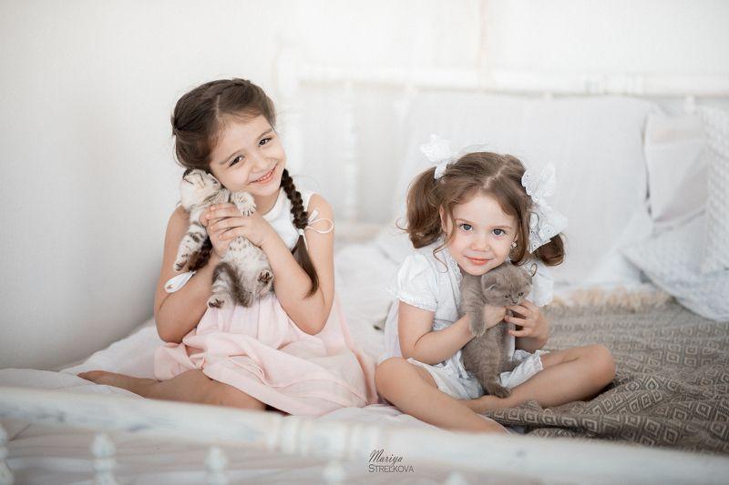 котики, котята, дети, Божечки - кошечки!photo preview