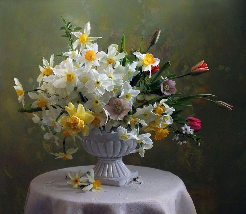 натюрморт, цветы, марина филатова, нарциссы, тюльпаны Нежная песня весныphoto preview