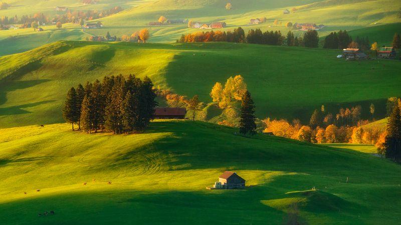 Швейцария холмы поля осень На зелёных холмахphoto preview