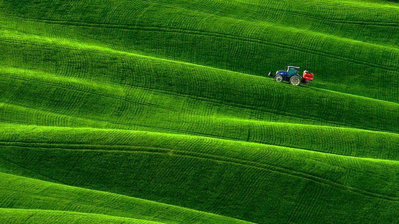 tuscany, тоскана, италия, italy, valdorcia, зеленые поля тосканы, asciano, весенняя тоскана, пейзажи тосканы, путешествие тоскана Зеленые дюны Тосканыphoto preview