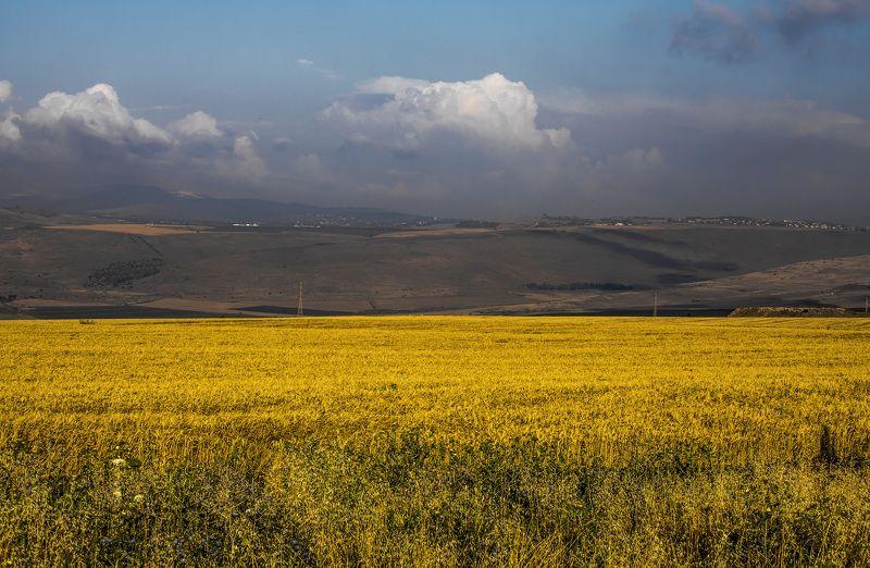 По дороге на Кинерет в маеphoto preview