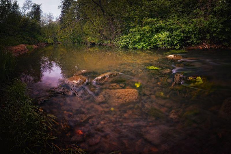 лес, природа, пейзаж, лето, река, вода, камни, течение, выдержка, ручей, подмосковье, вечер река Молодильняphoto preview