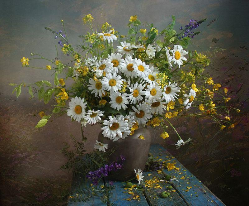 натюрморт, цветы, марина филатова, ромашки Расцвели в саду ромашкиphoto preview