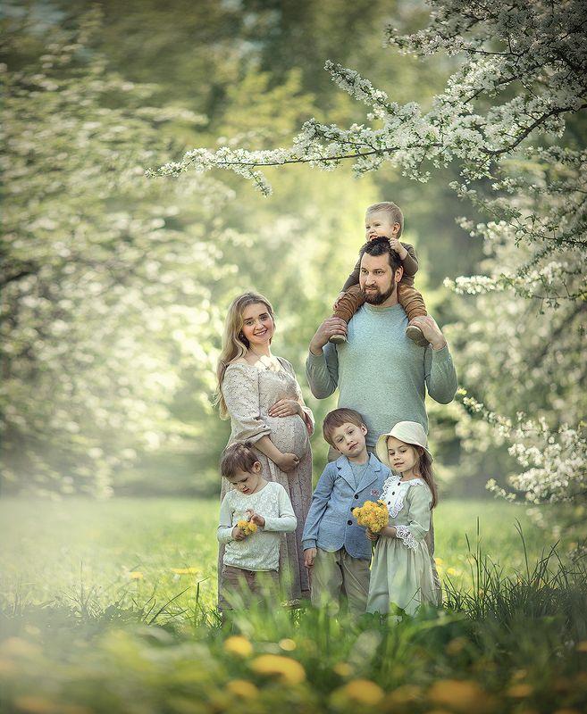 Идеальная семьяphoto preview