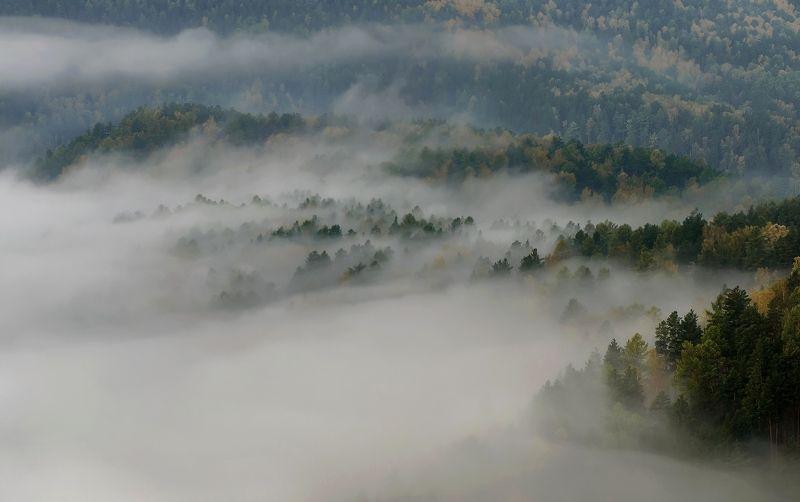 торгашинский хребет. склон. туман. Стелется туман.photo preview