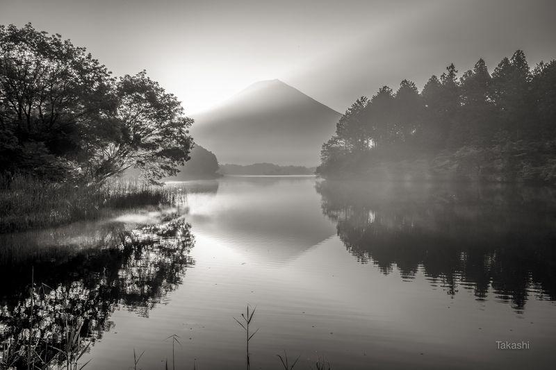 Fuji,mountain,Japan,lake,tree,sunrise,haze,gas,reflection Sunrise on the haze was very beautifulphoto preview