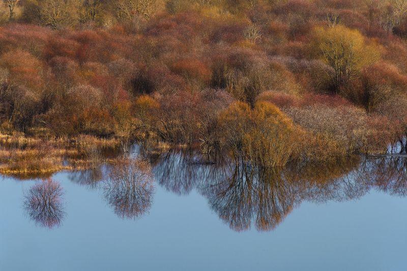 елатьма, весна, рязань, разлив Из серии photo preview