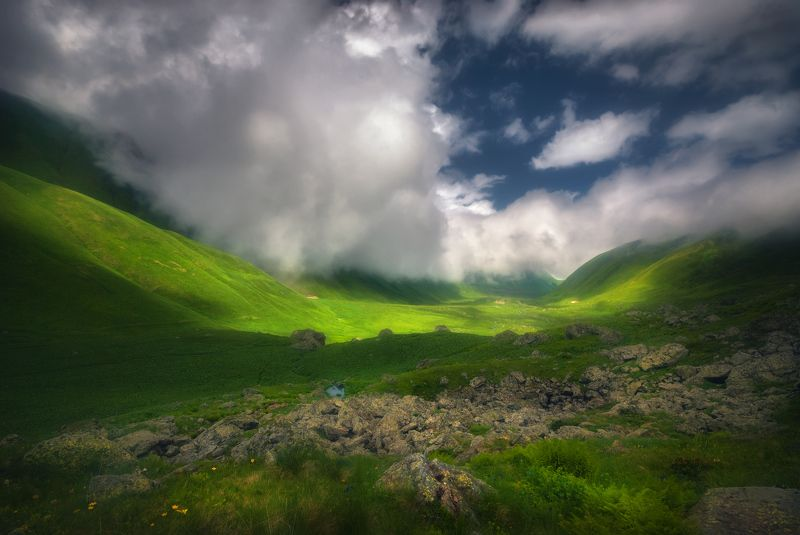 Лето в горахphoto preview