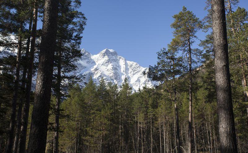 горы, красиво, кавказ Приэльбрусьеphoto preview