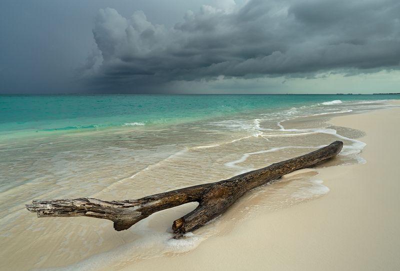 ocean, beach, clouds, storm, океан, пляж, облака, буря Storm is approachingphoto preview