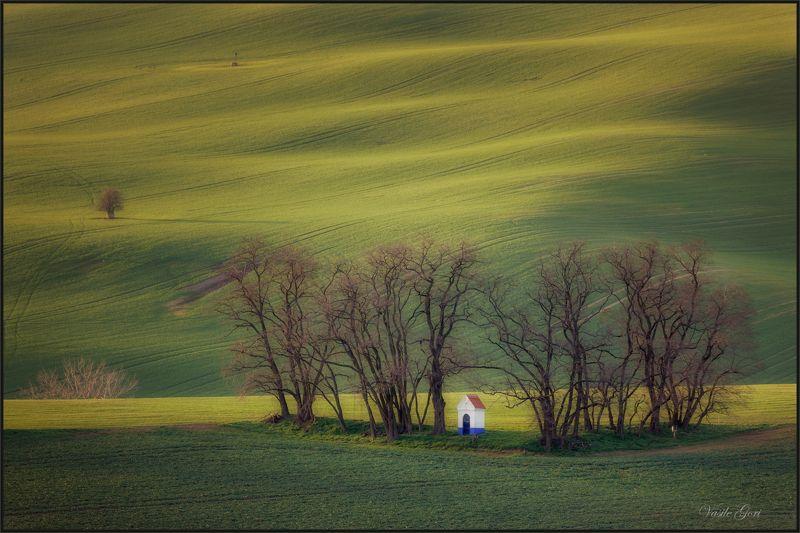 южная моравия,пейзаж,hils,часовня,линии,south moravian,поле,lines,свет,czech,веснa,чехия,landscapes. Strážovická kapličkaphoto preview