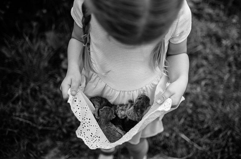 Чёрно-белое детствоphoto preview