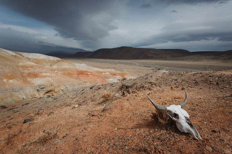 путешествия, чаган-узун, алтай, туризм, исследование, пейзаж, горы, река, хайкинг, марс, сибирь Добро пожаловать на Марсphoto preview