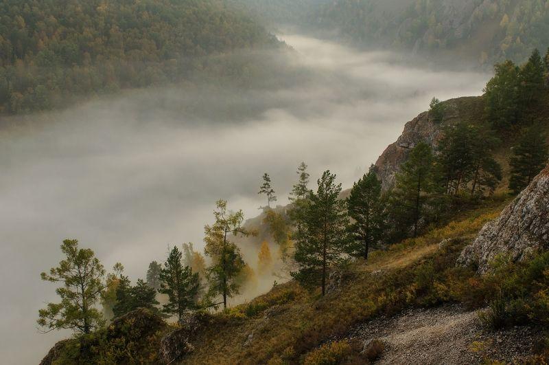 торгашинский хребет. склон. туман. Стелется туманphoto preview