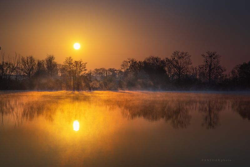 рассвет,zanfoar,czech republic,bohemia,восход солнца, озеро, пруд, деревья, солнце, дымка, туман, утро, настроение, природа, отражение, зеркальное отражение, рассветphoto preview
