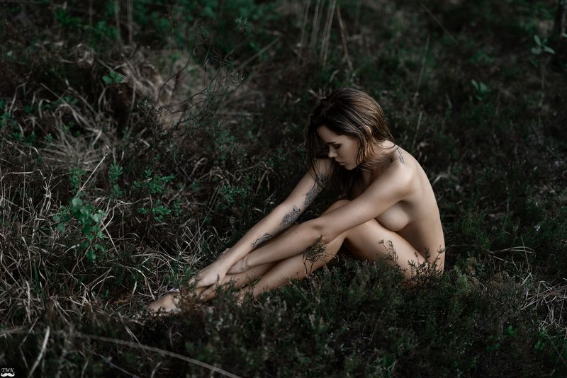 nature, woman, fineart, wild, people, nude, portrait, artwork, style, color Into the Wildphoto preview