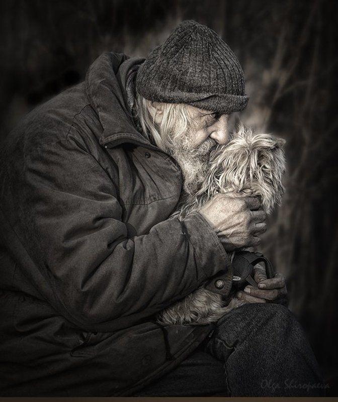 один, собака, семья, старость Единственная привязанность. фото превью