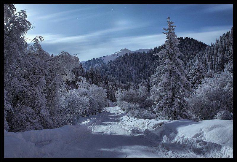 ночь,дорога,горы,зима Дорога в горыphoto preview