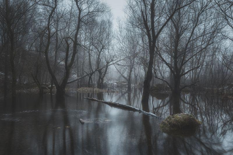 пейзаж,природа Семь дней после зимыphoto preview
